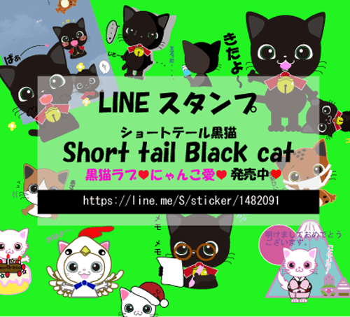 Short tail Black cat